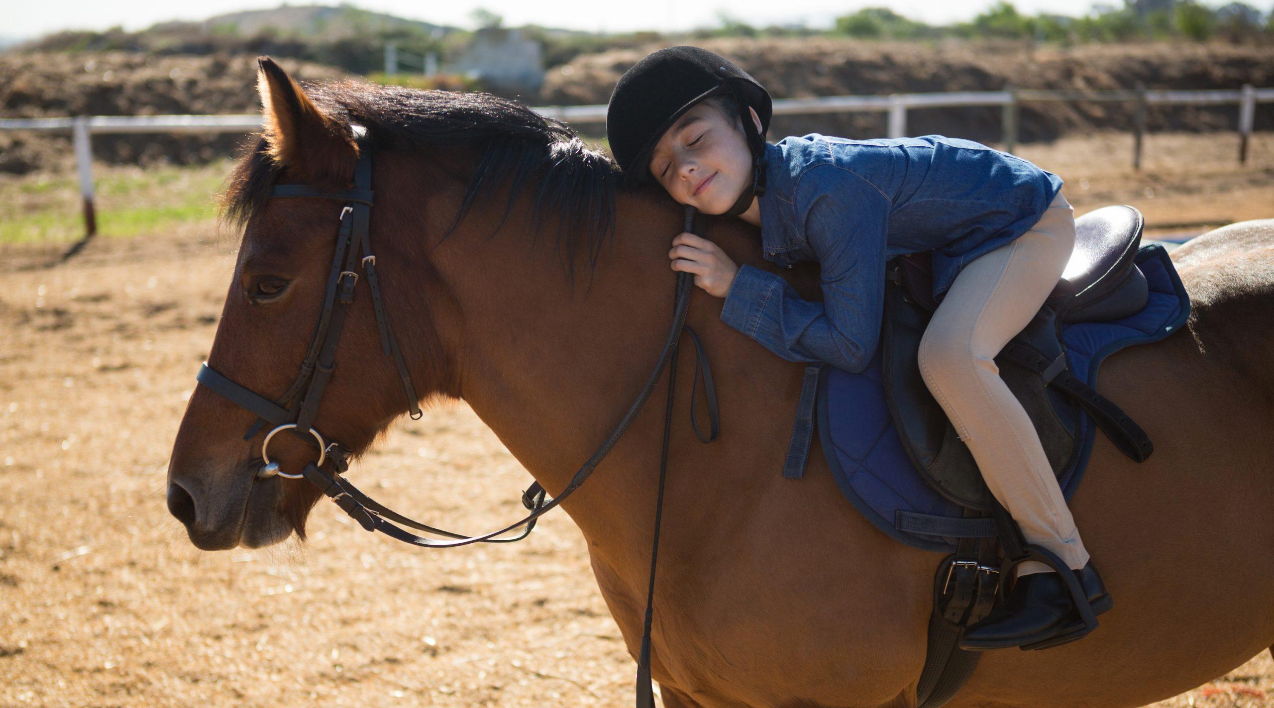 Arzt untersucht krankes Pferd