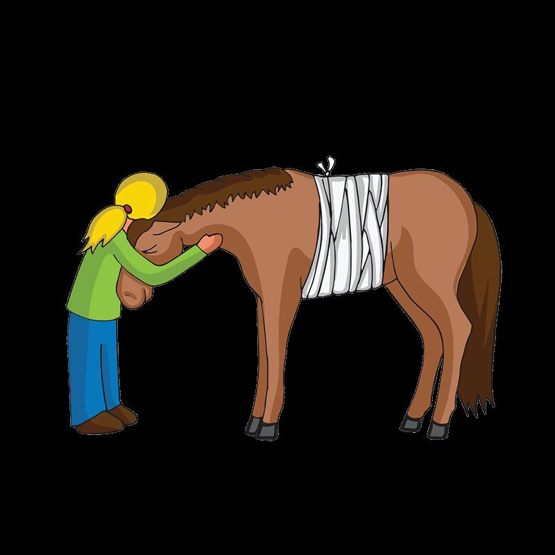 Ein krankes Pferd wird von seinem Besitzer umarmt