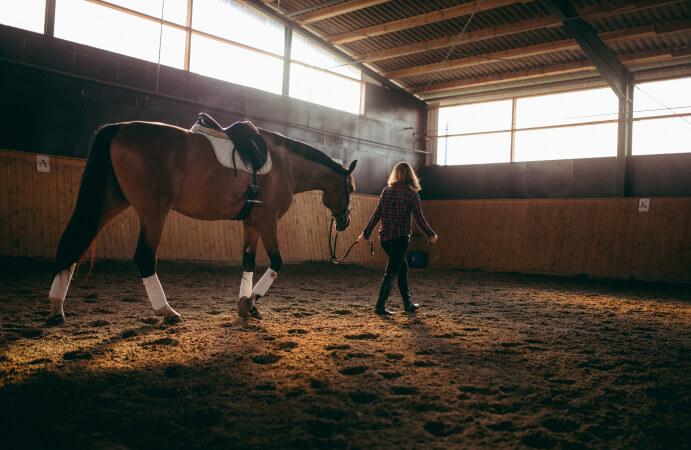 Frau bildet ihr Pferd aus